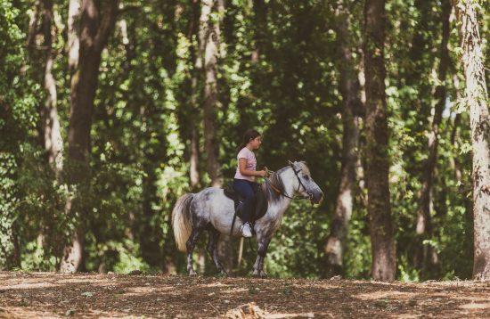 passeggiata a cavallo bosco di Paliano