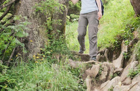 percorsi avventura bosco di paliano