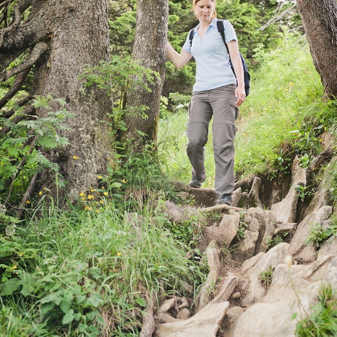 percorsi avventura bosco paliano