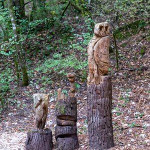 falegnami nel bosco
